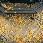 Herbst-in-Ansbach